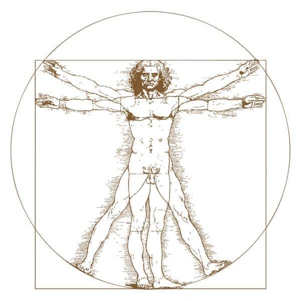 Bauherr des Menschen - Conwick (Vitruvian Man by Leonardo Da Vinci)